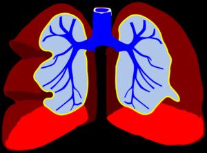 Giver e-cigaretter vand i lungerne?
